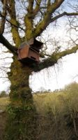07 - Barn Owl Box